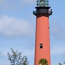 Jupiter Lighthouse by Donna Adamski