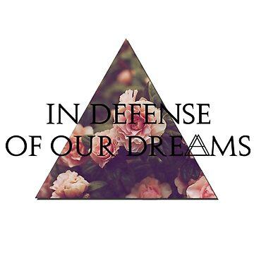 In Defense of Our Dreams by sheelight