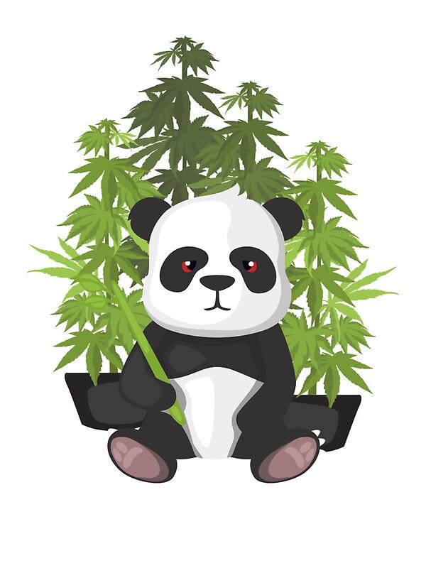 Quot High Panda Quot Stickers By Kushdesigns Redbubble