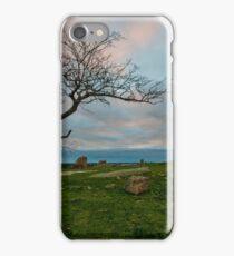 Dog Rocks Sunset iPhone Case/Skin