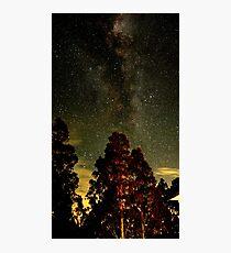 Star light star bright #3 Photographic Print