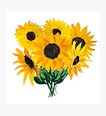 Painted sunflower bouquet Photographic Print