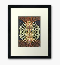 Universal Tree of Life Framed Print