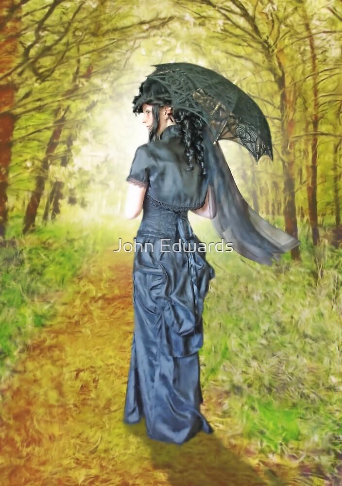 A woodland stroll by John Edwards