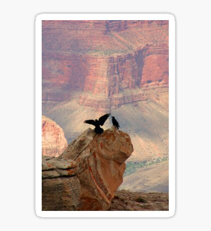 Grand Canyon Ravens Sticker