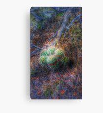 Sandia Mountain cactus hdr Canvas Print