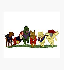 Canines Assemble! Photographic Print