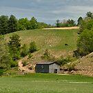 Kentucky Barn Quilt - Americana Star 2 by Mary Carol Story