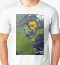 Small yellow flower and green big leaves in the sun light. T-Shirt