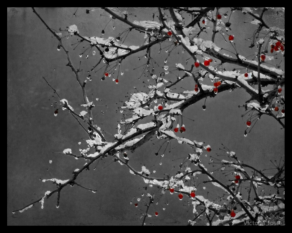 Memory of Seasons Past by Victoria Jostes