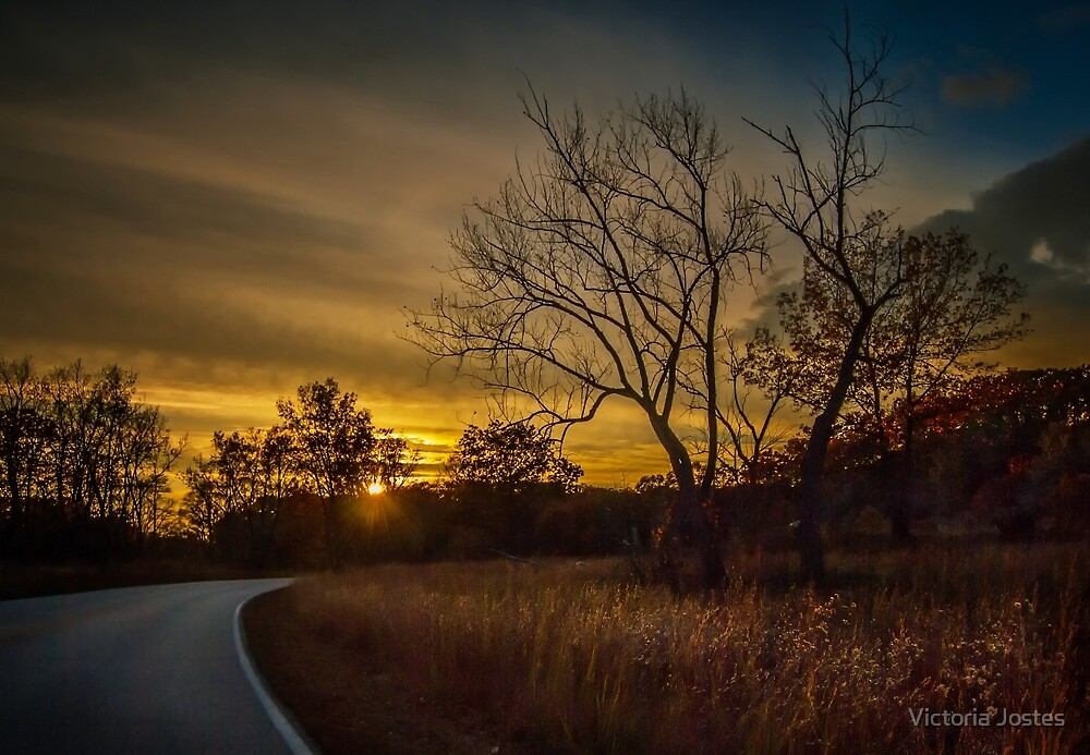 Into the Sunset by Victoria Jostes