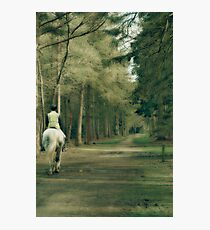A Sunday horse ride off the beaten track Photographic Print
