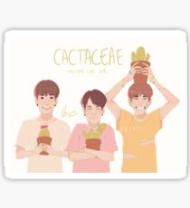 Cactaceae  Sticker