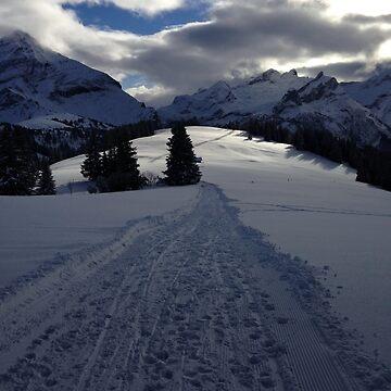 Snowy Mountain Trail by adamredshaw