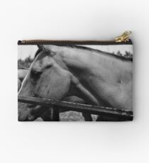 Rowdy at the gate. Studio Pouch