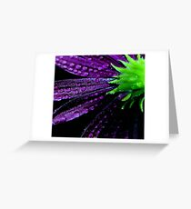 Purplicious Greeting Card