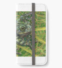 Gray Treefrog iPhone Wallet/Case/Skin