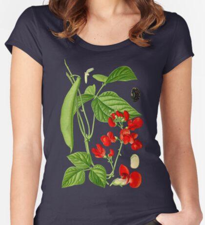 bean Women's Fitted Scoop T-Shirt