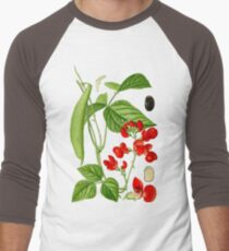 bean Men's Baseball ¾ T-Shirt