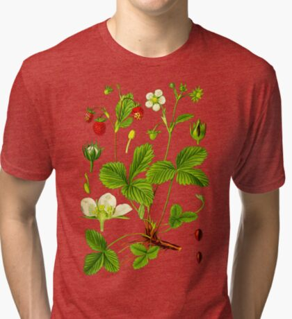 alpine strawberry Tri-blend T-Shirt