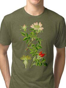 rosehip Tri-blend T-Shirt