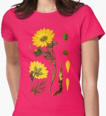 spring adonis Women's Fitted T-Shirt