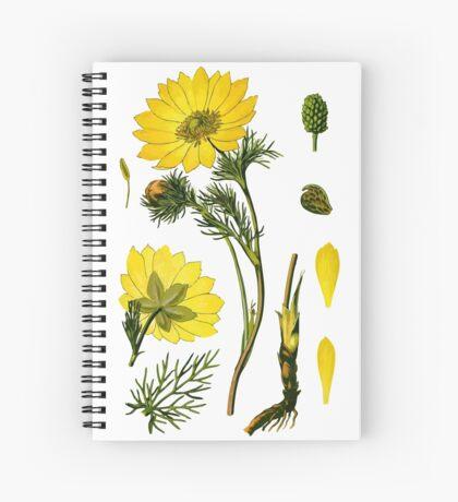 spring adonis Spiral Notebook