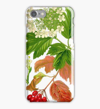 guelder rose iPhone Case/Skin