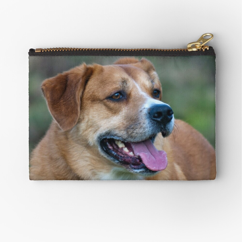 Looking for You Dog Zipper Pouch