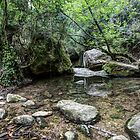 Martinet Creek (Aiguafreda, Catalonia) by Marc Garrido Clotet