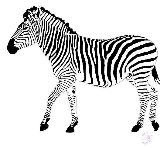 Zebra 1A by onejyoo