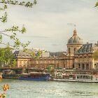 Institut de France by the Seine by Michael Matthews