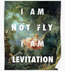 I AM NOT FLY, I AM LEVITATION Poster
