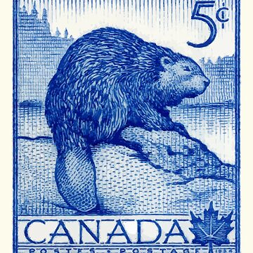 Vintage 1954 Canada Beaver Postage Stamp by retrographics