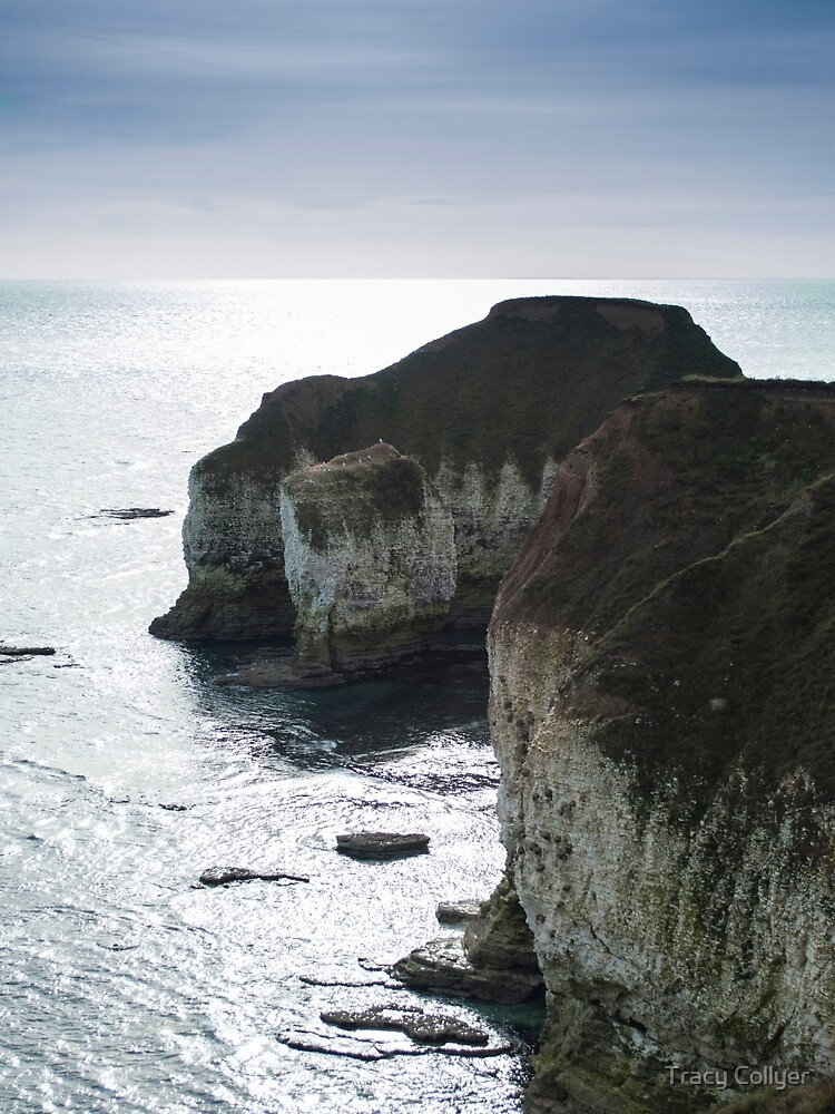 Chalk Cliffs by TracyCollyer