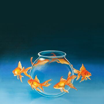 Goldfish by DanielLoveday