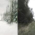 mirror of seasons IV by doubleblind