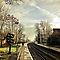 Members Choice - Railway Lines