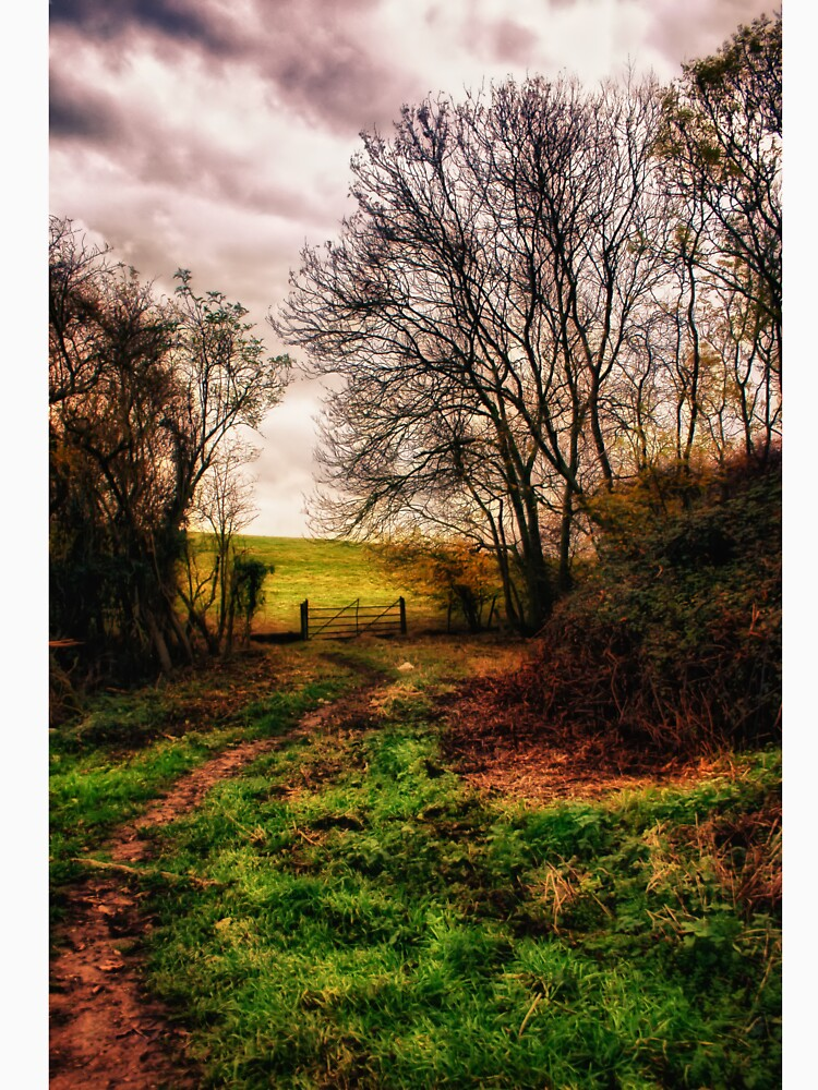 Muddy Country Path HDR by InspiraImage