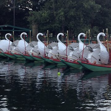 Boston Public Gardens Swan Boats  by captured-moment