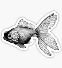 Google-eyed Fish  Sticker