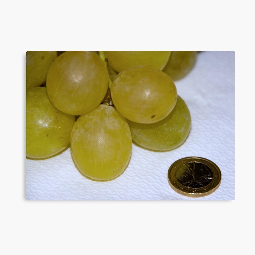 Monster Moscato grapes, Bolzano/Bozen, Italy Canvas Print