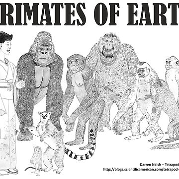 Primates of Earth by TetZoo