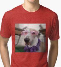 Canine Diva Tri-blend T-Shirt