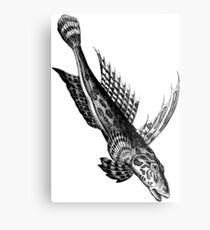 Dive Fish  Metal Print