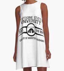 Theed University, Naboo (Star Wars) A-Line Dress