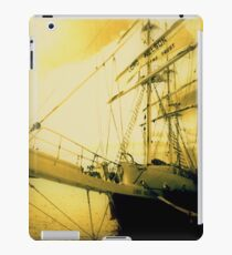 Lord Nielson Hobart iPad Case/Skin