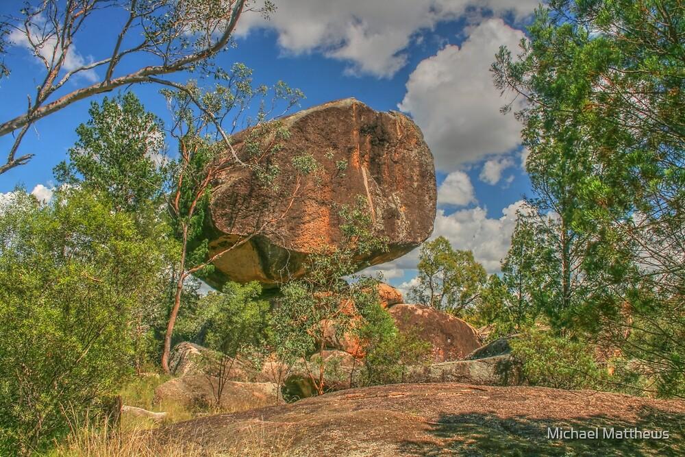 Cranky Rock sedated by Michael Matthews