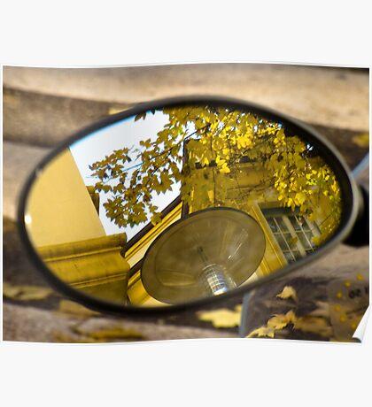Peeking through the leaves, Bolzano/Bozen, Italy Poster
