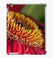 Red gerber daisy stamens iPad Case/Skin